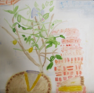 Painting depicts partial Shaker Lemon Pie in front of a Meyer lemon tree.